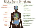 SERO Smoking Article Image